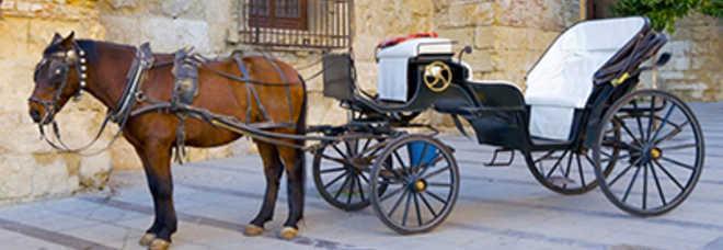 A Vicenza il sabato sera fino al 30 settembre si potrà fare una passeggiata  in carrozza b354263f65a7