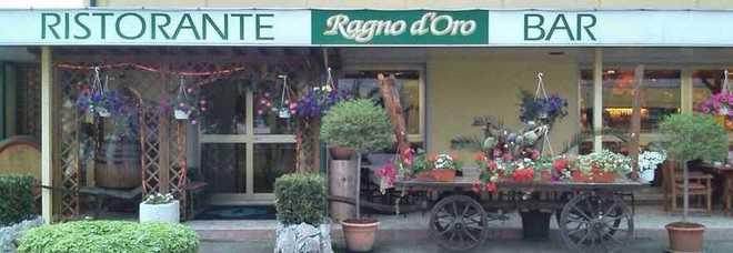 Villa Vicentina Ragno D Oro