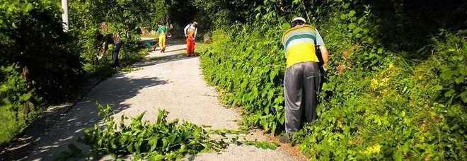 La provincia di udine offre lavoro a 12 disoccupati per 6 mesi for Lavoro a udine