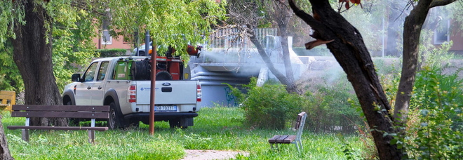 West Nile, l'emergenza non si ferma  Quarta vittima in Veneto: è veronese