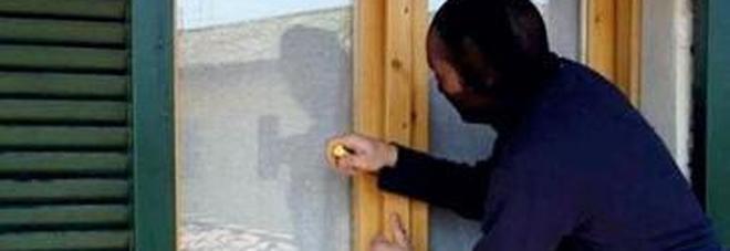 Faccia a faccia con il ladro in casa avvisata dall for Casa progetta il trotto del cane